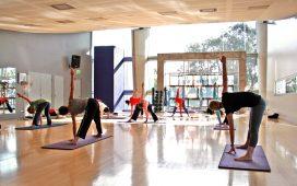 Yoga y Éxito